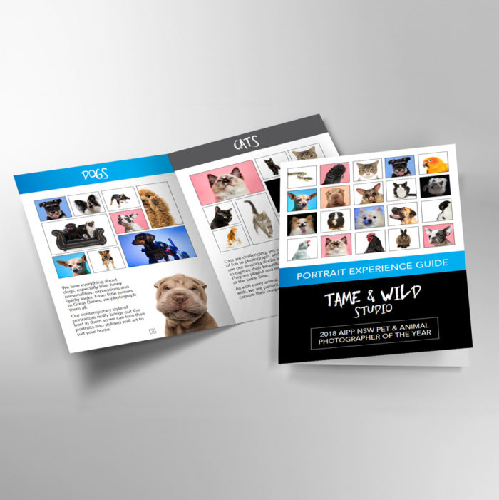 Tame and Wild Brochure